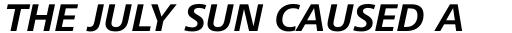 Frutiger Next Greek Bold Italic sample