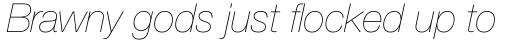 Neue Helvetica Paneuropean 26 Ultra Light Italic sample
