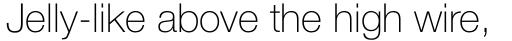 Neue Helvetica Paneuropean 35 Thin sample
