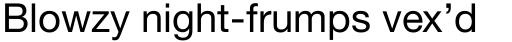 Neue Helvetica Paneuropean 55 Roman sample