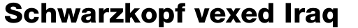 Neue Helvetica Std 85 Heavy sample