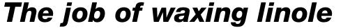 Neue Helvetica Std 86 Heavy Italic sample