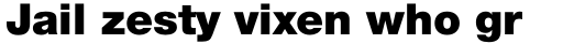 Neue Helvetica Paneuropean 95 Black sample