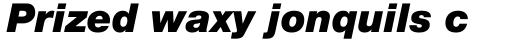 Neue Helvetica Paneuropean 96 Black Italic sample