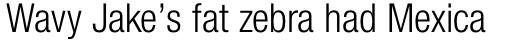 Neue Helvetica Paneuropean 47 Condensed Light sample