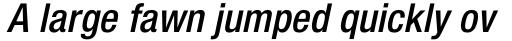 Neue Helvetica Paneuropean 67 Condensed Medium Oblique sample