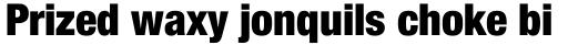 Neue Helvetica Paneuropean 97 Condensed Black sample