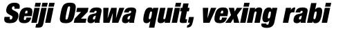 Neue Helvetica Paneuropean 107 Condensed Extra Black Oblique sample