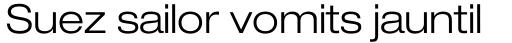 Neue Helvetica Std 43 Extended Light sample