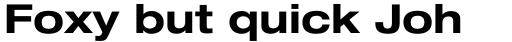 Neue Helvetica Std 73 Extended Bold sample
