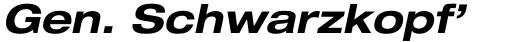 Neue Helvetica Std 73 Extended Bold Oblique sample