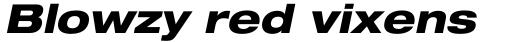 Neue Helvetica Std 83 Extended Heavy Oblique sample