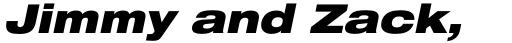 Neue Helvetica Std 93 Extended Black Oblique sample
