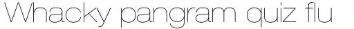 Neue Helvetica Paneuropean 23 Extended Ultra Light sample