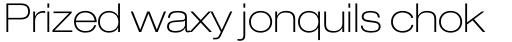 Neue Helvetica Paneuropean 33 Extended Thin sample