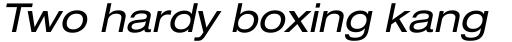 Neue Helvetica Paneuropean 53 Extended Oblique sample