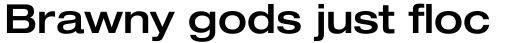 Neue Helvetica Paneuropean 63 Extended Medium sample