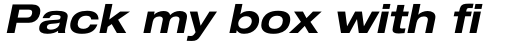 Neue Helvetica Paneuropean 73 Extended Bold Oblique sample