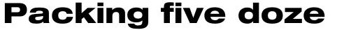 Neue Helvetica Paneuropean 83 Extended Heavy sample