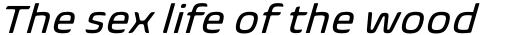 Biome Std Basic Italic sample
