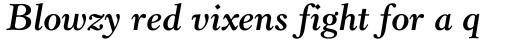 Revival 555 Bold Italic sample