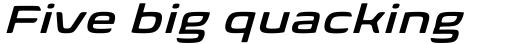 Biome Pro Wide Semi Bold Italic sample