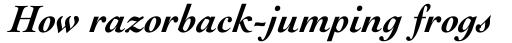 Engravers Oldstyle 205 Bold Italic sample
