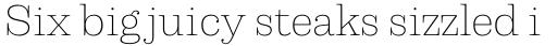 Capital Serif Extra Light sample
