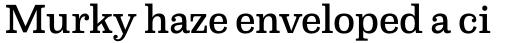 Capital Serif Medium sample