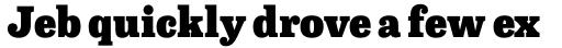Capital Serif Black sample