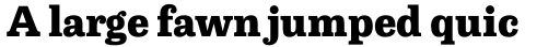 Capital Serif Extra Bold sample