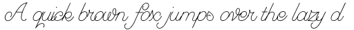 Greyhound Script sample