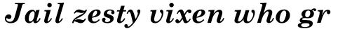 Monotype Century Schoolbook Pro Cyrillic Bold Italic sample