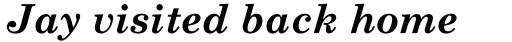 Monotype Century Schoolbook Std Bold Italic sample