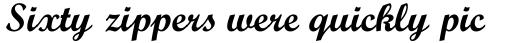 Monotype Script Pro Bold sample