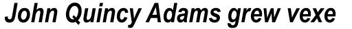 Arial Narrow OS Bold Italic sample