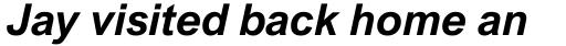 Arial Nova Bold Italic sample