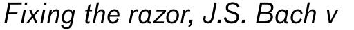 FF Bau Std Regular Italic sample