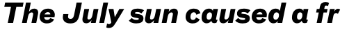 FF Bau Std Bold Italic sample