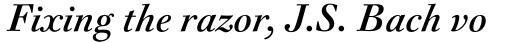 FF Acanthus Std Text Regular Italic sample