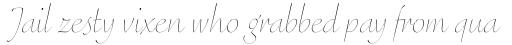 FF Eggo Std Thin Italic sample