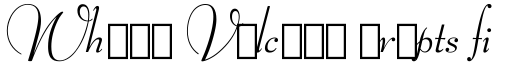 Bernhard Modern Italic Swash sample