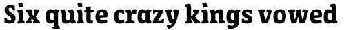 FF Amman Serif Arabic Bold sample
