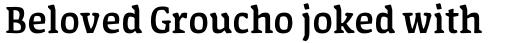 FF Amman Serif Arabic Medium sample