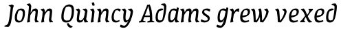 FF Amman Serif Arabic Regular Italic sample