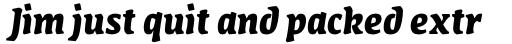 FF Amman Serif Arabic Bold Italic sample