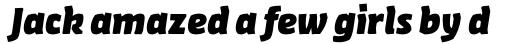 FF Amman Sans Arabic Extra Bold Italic sample