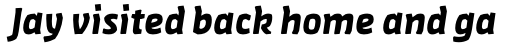 FF Amman Sans Arabic Bold Italic sample