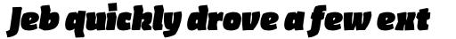 FF Amman Sans Arabic Black Italic sample