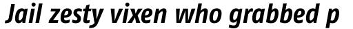 FF Fago Pro Condensed Bold Italic sample